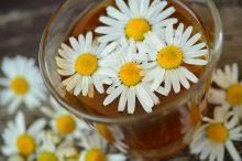 Napar z rumianku — na co pomaga? Czy pomoże na ból dziąseł?